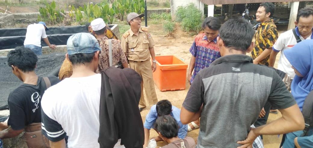 DKP Mesuji Berikan Pelatihan Pemijahan Benih Ikan Gurami dan Lele Kepada UPR