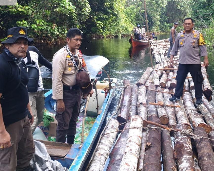 Gerak Cepat Polres Siak Selidiki Dugaan Tindak Pidana Ilegal Logging di Kampung Rawa Mekar Jaya