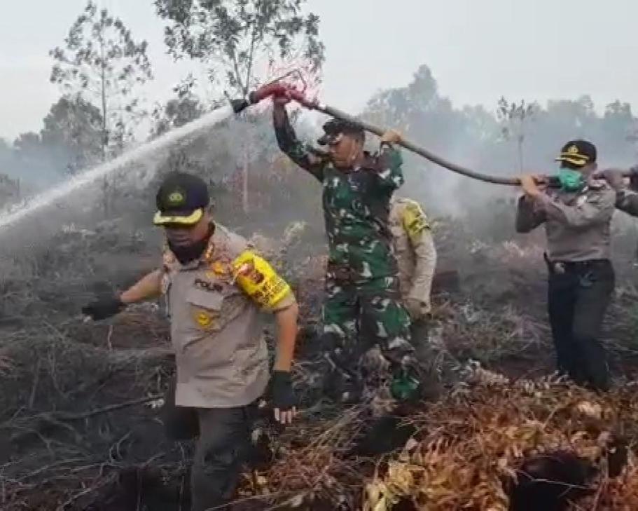 Kapolresta Pekanbaru Berserta Dandim 0301/Pekanbaru Berjibaku Memadamkan dan Pendinginan Lahan