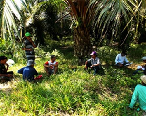 Zulfadli Kadis Perkebunan Riau Sebut, Kita Akan Memperjuangkan Hak-hak Petani Pekebun